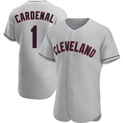 Jose Cardenal Cleveland Indians Men's Authentic Road Jersey - Gray