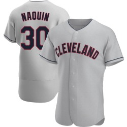 Tyler Naquin Cleveland Indians Men's Authentic Road Jersey - Gray
